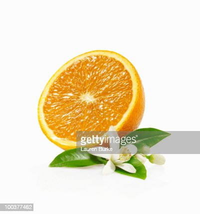 Half Orange with Blossom