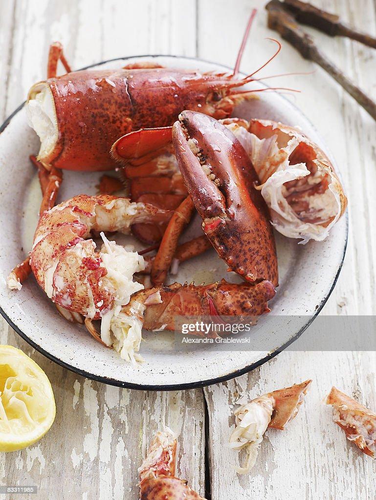 Half-eaten Lobster