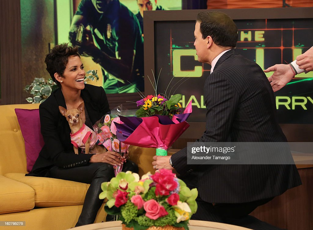 Halle Berry and Raul Gonzalez appear on Univision's Despierta America to promote her film 'The Call' at Univision Headquarters on February 27, 2013 in Miami, Florida.