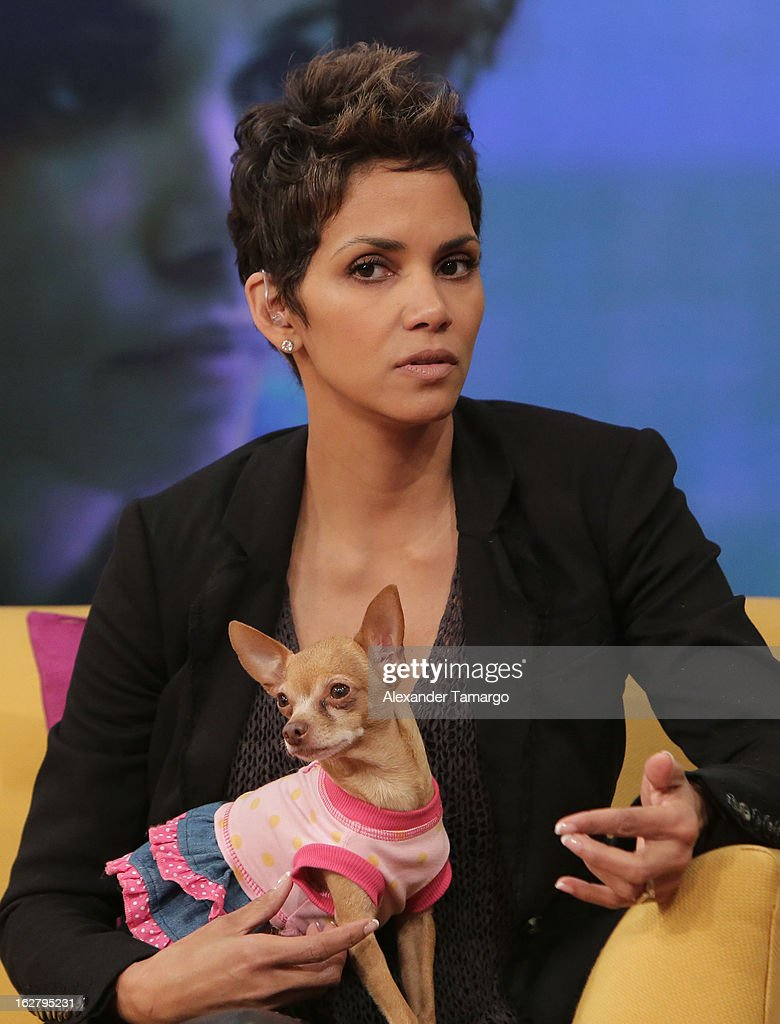 <a gi-track='captionPersonalityLinkClicked' href=/galleries/search?phrase=Halle+Berry&family=editorial&specificpeople=201726 ng-click='$event.stopPropagation()'>Halle Berry</a> appears on Univision's Despierta America to promote her film 'The Call' at Univision Headquarters on February 27, 2013 in Miami, Florida.