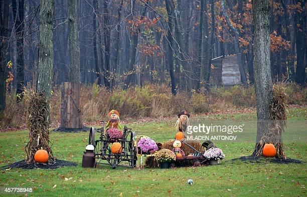 Halloween decorations are seen on a house lawn outside Oakland in Maryland on October 22 2014 AFP PHOTO/MLADEN ANTONOV