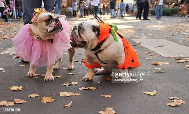 Halloween-Duo