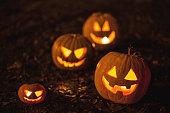 Halloween jack-o-lantern pumpkins on ground with brown autumn leaves