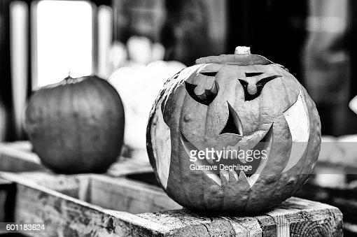 Halloween : Stock-Foto