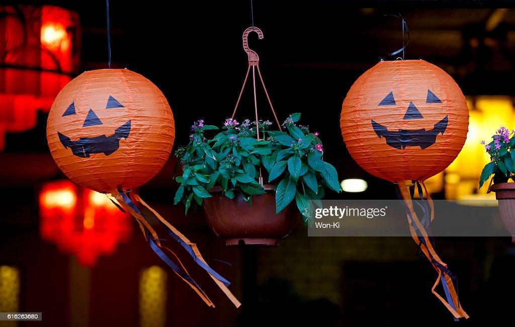 Halloween : Stock Photo