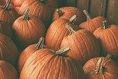Halloween pile of pumpkins at a pumpkin patch.