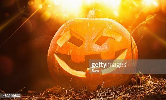 Halloween de calabaza : Foto de stock