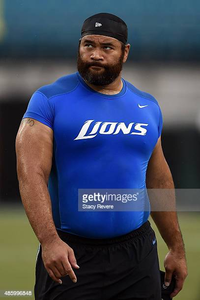 Haloti Ngata Stock Photos And Pictures Getty Images