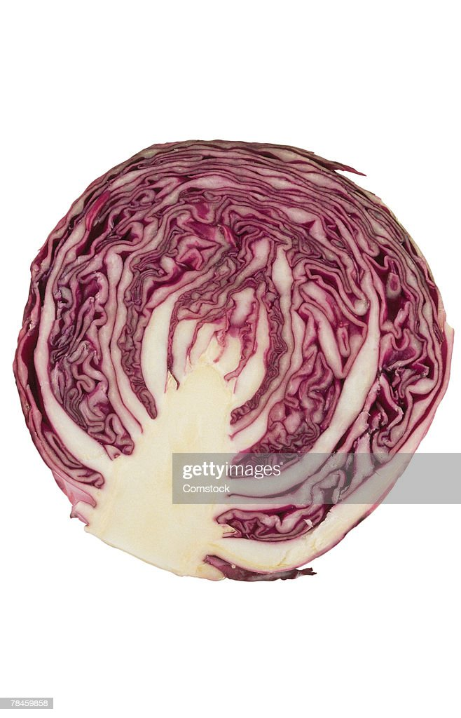 Halved red cabbage : Stock Photo