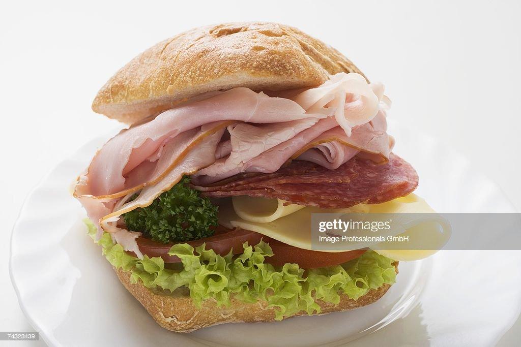 Ham, salami and cheese sandwich : Stock Photo