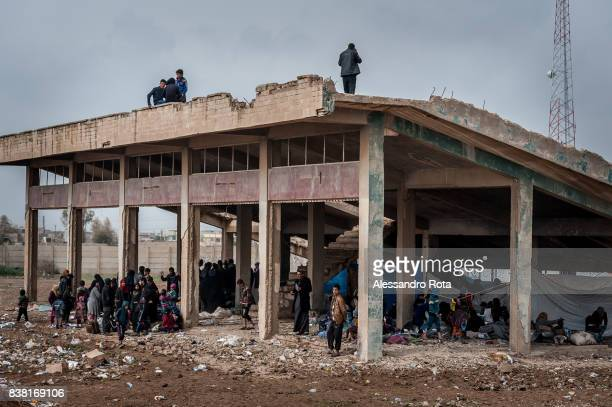 IRAQ Hamam Al Alil Refugee camp in Mosul Province 13 Mar 2017 Unknown numbers of people are arriving at the refugee camp every day escaping from the...