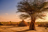 Africa, Ethiopia, huts in a Hamer village in the sunset light