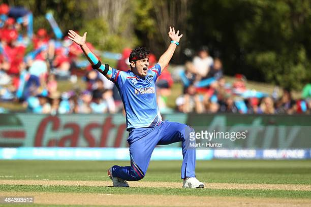 Hamid Hassan of Afghanistan celebrates dismissing Hamish Gardiner of Scotland during the 2015 ICC Cricket World Cup match between Afghanistan and...