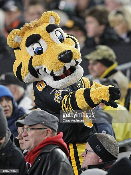 Hamilton Tigercats mascot Stripes gets the crowd going against the BC Lions in a CFL football game at Tim Hortons Field on October 4 2014 in Hamilton...