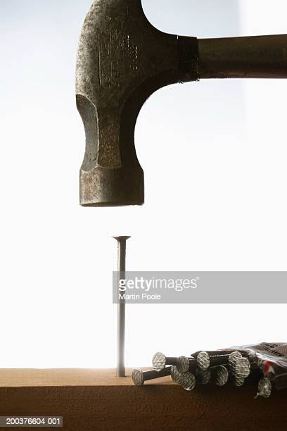 Hammer above nail sticking out of wooden surface, close-up