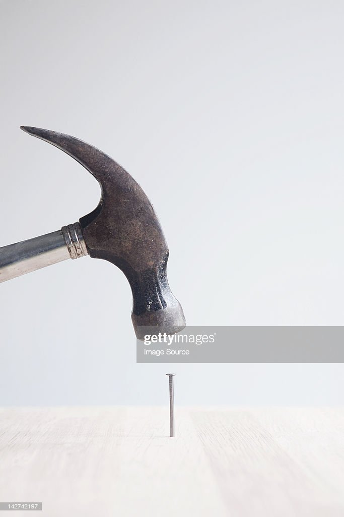 Hammer and nail : Stock Photo