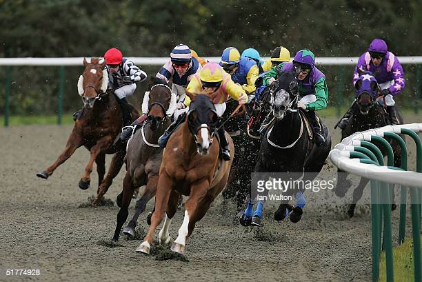 Hammer of the Gods ridden by Neil Callan comes round the final bend to win during The Bet Direct on ITV Page 367 Banded Stakes at Lingfield...