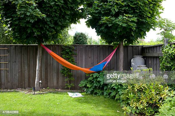 Hammock hanging in garden