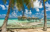Hammock in a beach in Tikehau, Tahiti