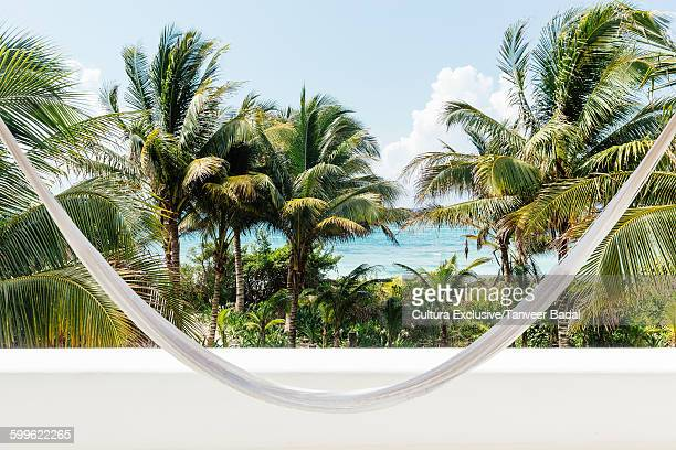 Hammock, palms trees and coast, Tulum, Riviera Maya, Mexico