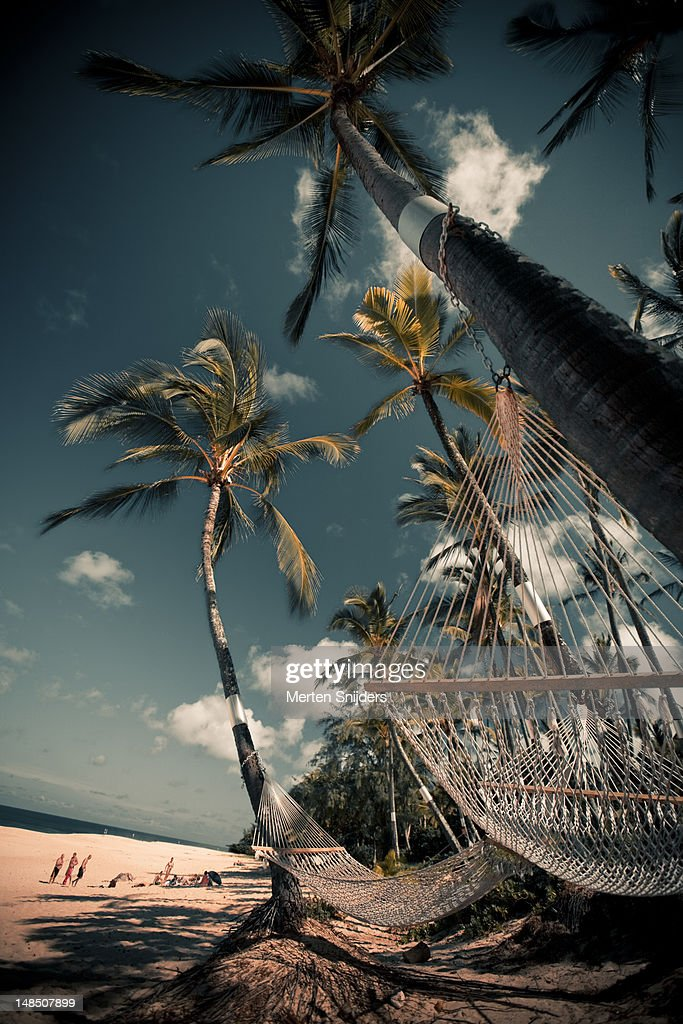 Hammocks tied to palm trees overlooking Sunset beach.