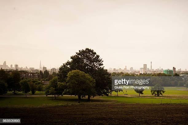 Hampstead Heath and the London skyline