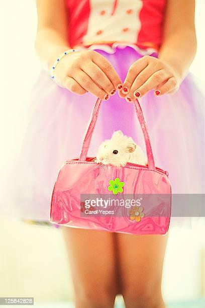 Hamster in bag