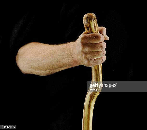 Hand and Walking Stick
