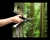 Hand cutting photograph of forest with scissors