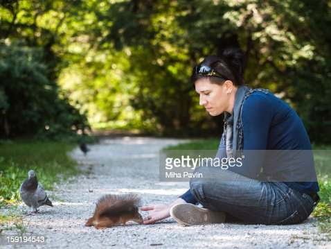 Hand feeding squirrels in park : Stock Photo