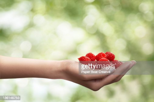 hand holding a portion of fresh raspberries : Stock Photo