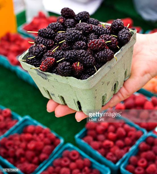 Hand holding a punnet of blackberries for sample