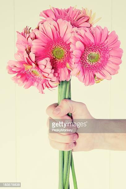 Main tenant Bouquet de rose Daisies