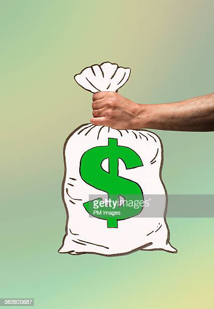 Hand holding cartoon money bag