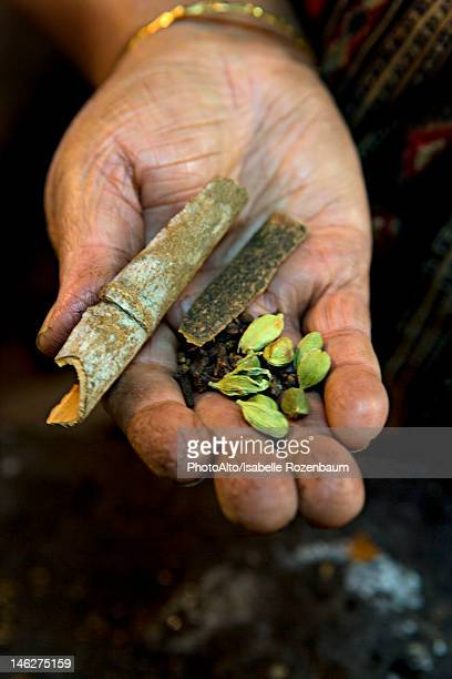 Hand holding cinnamon quills, cardamoms and cloves