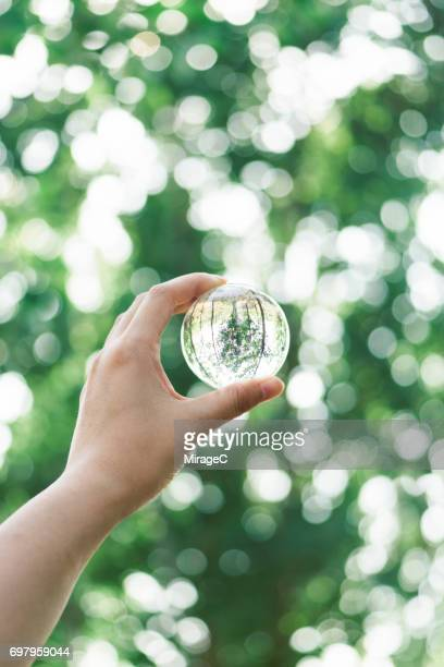 Hand Holding Crystal Ball Against Green Trees Bokeh