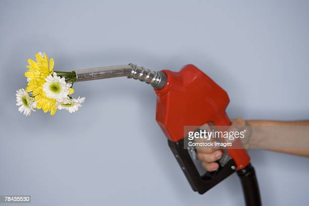 Hand holding gas pump filled with flowers