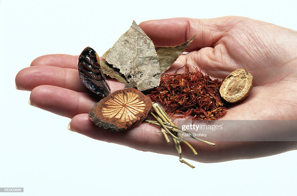 Hand Holding Herbal Remedies : Stock Photo