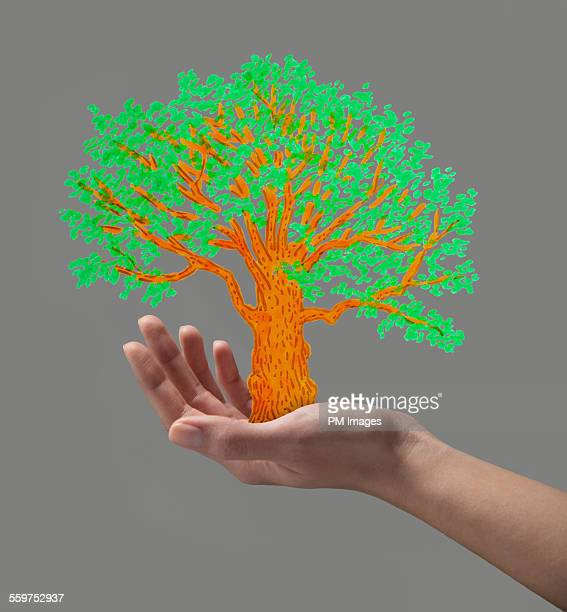 Hand holding illustrated tree