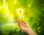 hand holding a light bulb with energy and fresh green leaves inside on nature background, soft focus
