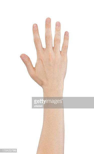 Hand holding out five fingers isolated on a white background