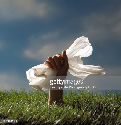 Hand holding plastic bag. : Stock Photo
