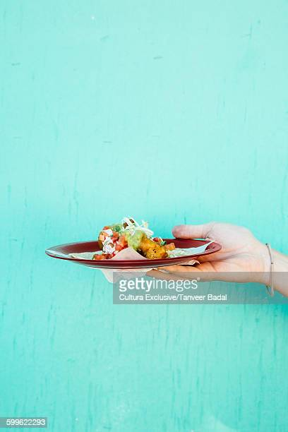 Hand holding plate of fresh fish taco, Ensenada, Baja California, Mexico