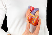 Female hand holds human heart model in front of white chest with black background. This artificial organ model is used for education in high school to learn students about biology. They learn about th