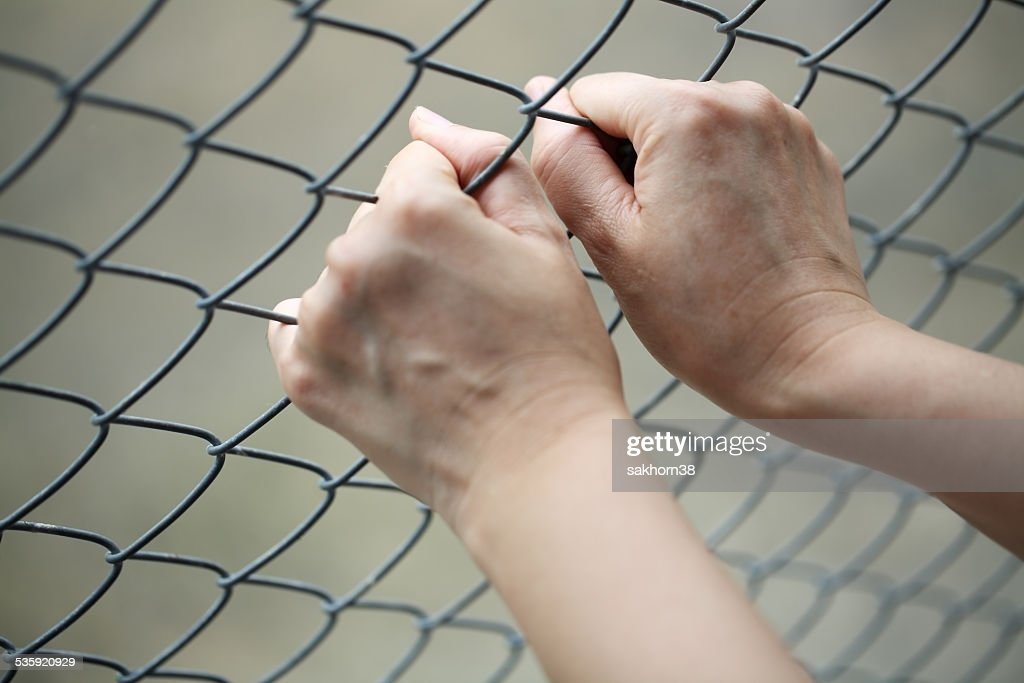 hand in jail. : Stock Photo