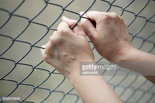 hand in jail. : Stock Photo