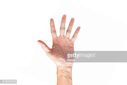 hand isolated on white background. : Stock Photo