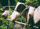 Hand made baskets on a bamboo fence