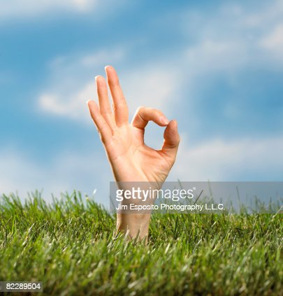 Hand making the 'O.K' sign. : Stock Photo