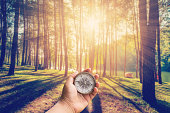 Hand man holding compass at larch forest with sunlight and shadows at sunrise with vintage scene.